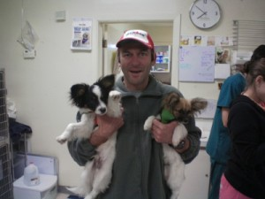 The great staff at Animal Trustees of Austin offered to take this picture of me with the Pupillons before their surgery.
